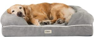 Friends Forever Orthopedic Memory-Foam Dog Bed