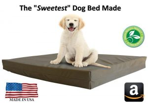 Pet Support Systems Luxury Dog Beds - Orthopedic Memory Foam