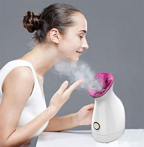 FLYMEI Nano Acne Nano Sprayer Facial SPA Steamer