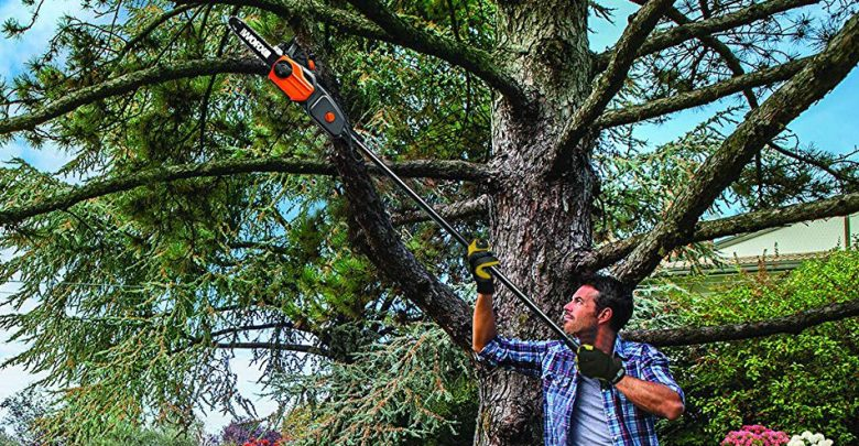 Photo of Top 10 Best Electric Pole Saws in 2020 – Reviews 0 (0)