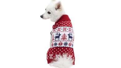 Photo of Top 10 Best Dog Christmas Sweaters in 2020 – Reviews