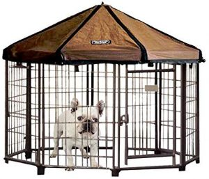Pet Gazebo Outdoor Dog Kennel with Reversible Cover by ADVANTEK