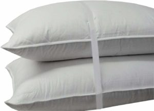 Royal Hotel's 500 Thread Count Cotton Down Pillow