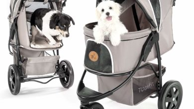 Photo of Top 10 Best Dog Strollers in 2020 – Reviews – Strollers for Pets