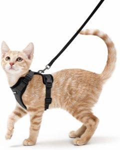Rabbitgoo Cat Harness & Leash Adjustable Vest Harnesses
