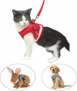 Kamots Beauty Escape Proof Cat Harness & Leash