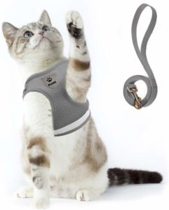 Supet Cat Harness & Leash Set for Walking Escape Proof